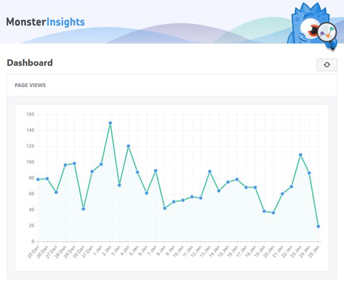 WordPress - Monster Insights Plugin