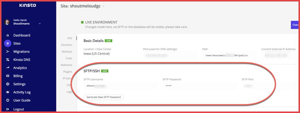 FTP-details-Kinsta-hosting